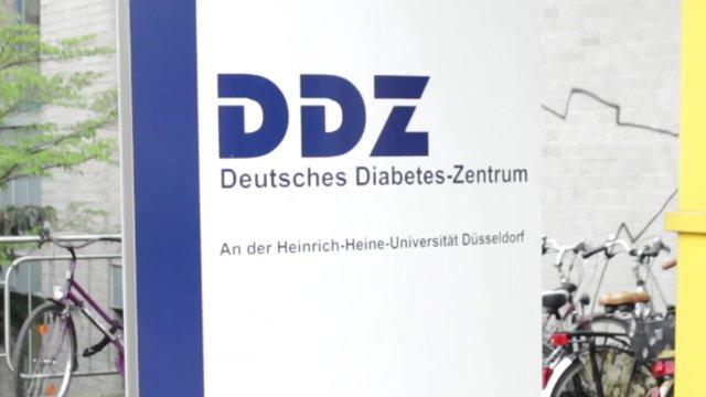 Der Diabetes Informations-Tag im DDZ Düsseldorf 2014
