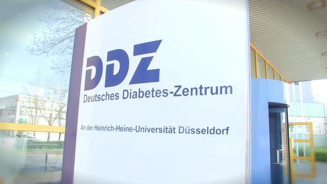 50 Jahre Deutsches Diabetes-Zentrum Düsseldorf (DDZ)