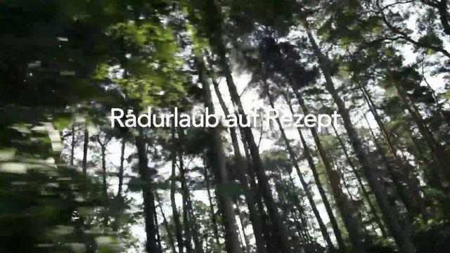 Hasetal Touristik – Radurlaub auf Rezept